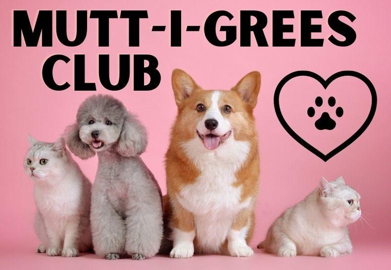 Mutt-I-Grees Club @ Home